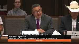 Romeo Saganash Says UNDRIP Bill Will Reduce Indigenous Court Cases [Video]