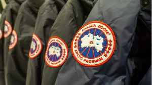 Canada Goose Dives After Major Losses [Video]