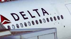 Man Sues Delta Over An 'Emotional-Support Dog' Allegedly Attacking Him On Flight [Video]