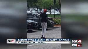 Man steals from local Victoria Secret multiple times [Video]