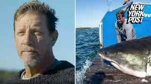 Shark wrangler jumps in with live great whites [Video]