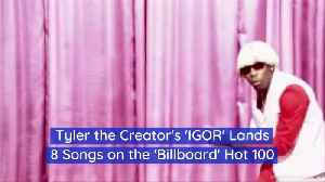Tyler The Creator Is Very 'In' Right Now [Video]