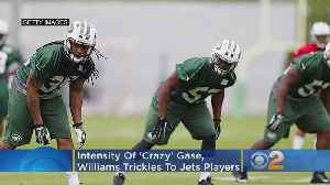 Intensity Of 'Crazy' Gase, Williams Trickles To Jets Players [Video]