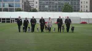 Seven police dogs given 'animal OBEs' for work after London terror attacks [Video]