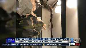 Tree fell on home, took down power lines in Perry Hall [Video]