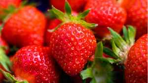 Why Eating Berries Can Be Beneficial For Women [Video]