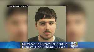 Man Sentenced To 15 Years For String Of Dumpster Fires, Robbing 7-Eleven At Knifepoint [Video]