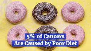 Diet Alone Is A Major Factor In Cancer Statistics [Video]