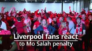 Fans go wild after Mo Salah penalty puts Liverpool ahead in Champions League final [Video]
