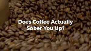 Can Coffee Stop The Effects Of Alcohol [Video]