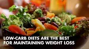 Low Carb Diets For Lasting Weight Loss [Video]