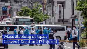 Mass Stabbing Rocks Japan [Video]