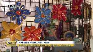 Palmer Park Art Fair [Video]