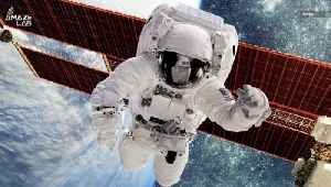Scientists Found a Part of the Human Body Not Harmed by Space [Video]