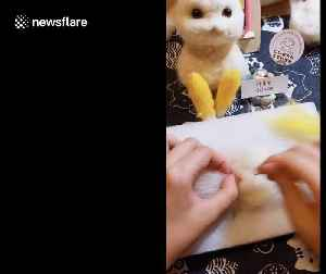 Chinese girl makes Pikachu out of wool after being inspired by 'Pokemon Detective Pikachu' [Video]