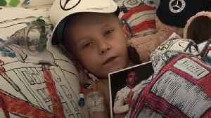 Harry Shaw: Five-year-old Lewis Hamilton fan dies of cancer [Video]