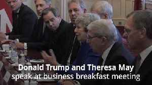 Donald Trump predicts 'substantial' trade deal during talks with Theresa May [Video]