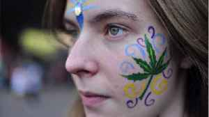 Cannabis Research Neglects Impact On Women [Video]