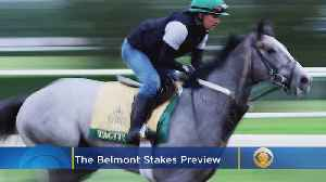 Belmont Stakes Preview [Video]
