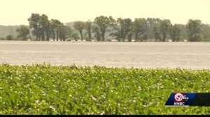 Floodwaters hurting farmers in Ray County [Video]