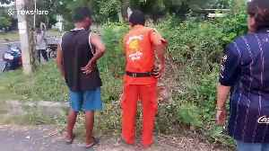 Locals rescue calf who fell into hole while eating grass in Thailand [Video]