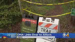 DNA Proves Bear Killed By Wildlife Officers Did Attack Woman [Video]