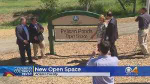 Pelican Ponds Open Space Now Open To The Public [Video]