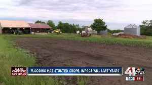 Midwest flooding affects far more than farmers [Video]
