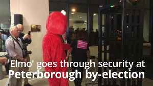 'Elmo' undergoes security check at Peterborough by-election [Video]