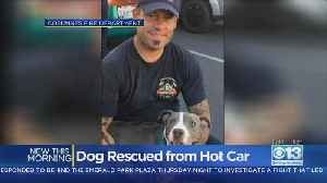 Cosumnes River Firefighters Rescue Dog From Hot Car [Video]