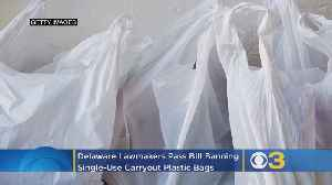 Delaware Lawmakers Pass Bill Banning Single-Use Carryout Plastic Bags [Video]