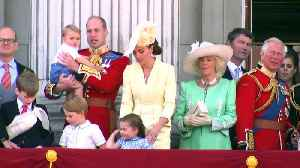 Adorable Prince Louis waves at planes during Trooping the Colour flypast [Video]