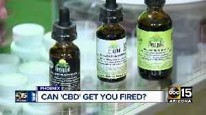 Can using CBD products cost someone their job? Here's what you need to know [Video]