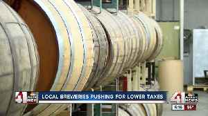 Craft brewers urge Congress to pass bill lowering taxes to produce beer [Video]