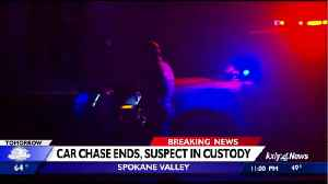 Man leads deputies on extensive car chase, found hiding in tree by K9 [Video]