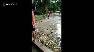 'That won't wash out!' School kids play mud soccer in Indonesia [Video]