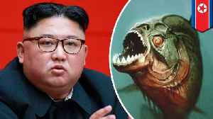 Kim Jong-un executes general by tossing him in piranha tank [Video]