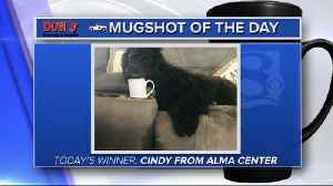 Mug shot of the day - Cindy from Alma Center [Video]