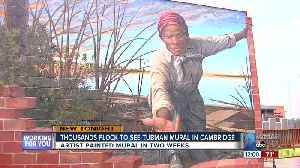 Thousands flock to honor, explore new Harriet Tubman mural in Cambridge [Video]