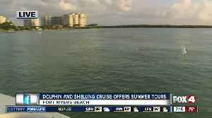 Island Time Dolphin and Shelling Cruises run private tours out of Fort Myers Beach [Video]