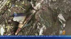 NTSB Investigating Deadly Midtown Helicopter Crash [Video]