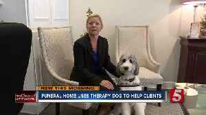 Franklin funeral home using therapy dog 'Mac' to ease difficult days [Video]