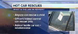 Know the law for rescuing pets/children [Video]