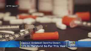 Opioid-Related Deaths Down 14 Percent In Md. In 2019, Report Shows [Video]