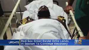 Red Sox Great David Ortiz Lands In Boston To Continue Recovery [Video]
