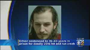 Man Sentenced In Death Of Pedestrian Killed Jogging With Dog [Video]