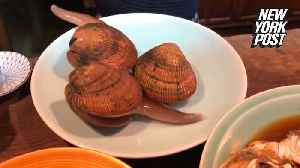 Disgusting live shellfish try to make a run for it [Video]