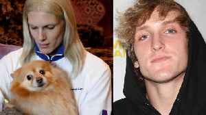 Logan Paul CHALLENGES Justin Bieber To FIGHT! Fans Mourn Jeffree Stars' Dog Diamond [Video]