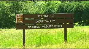 VIDEO Cherry Valley National Wildlife Refuge may soon be opened up to fishing [Video]