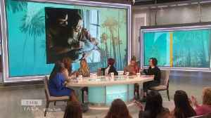 The Talk - Hilary Duff Would '100 percent' Do Another Home Birth If 'low risk' [Video]